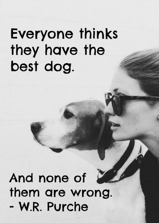 20 Quotes That Prove Dogs Are TRULY (Wo)Man's Best Friend | YourTango