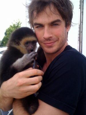 """<a href=""""http://www.vampire-diaries.net/gallery/displayimage.php?pid=1573"""">vampire-diaries.net</a>"""