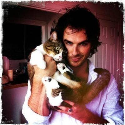 "<a href=""http://animalfair.com/vampire-diaries-star-ian-somerhalder-is-drawn-to-cats-like-blood/"">animalfair.com</a>"