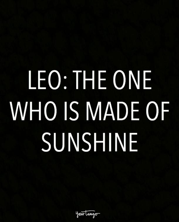 leo zodiac signs in one sentence