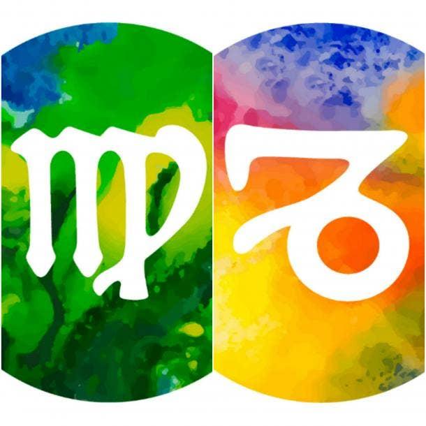 virgo capricorn zodiac sign twins