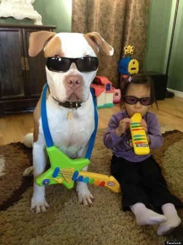 "<a href=""http://www.huffingtonpost.com/2013/01/28/dog-baby-rock-band_n_2569409.html"" target=""_blank"">huffingtonpost.com</a>"