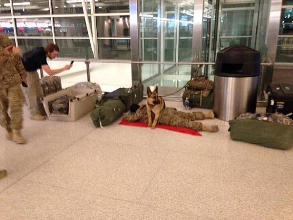 "<a href=""https://shine.yahoo.com/ellen-good-news/military-dog-protects-soldier-8211-even-airport-200900092.html"" target=""_blank"">shine.yahoo.com</a>"