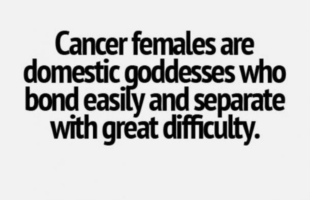 Cancer females are domestic goddesses who bond easily and separate with great difficulty.