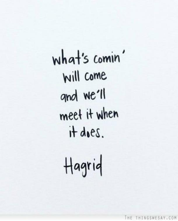 Hagrid Harry Potter Quotes