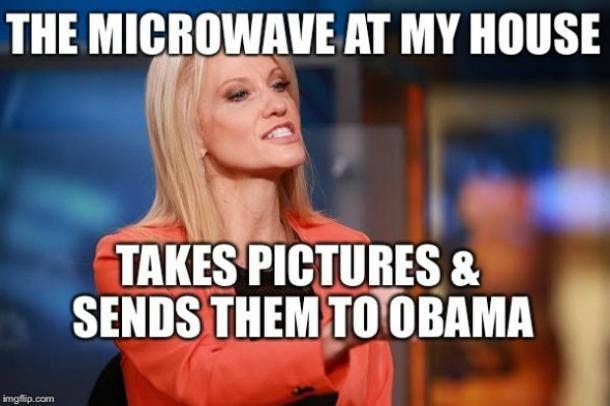 KellyAnne Conway Microwave Memes