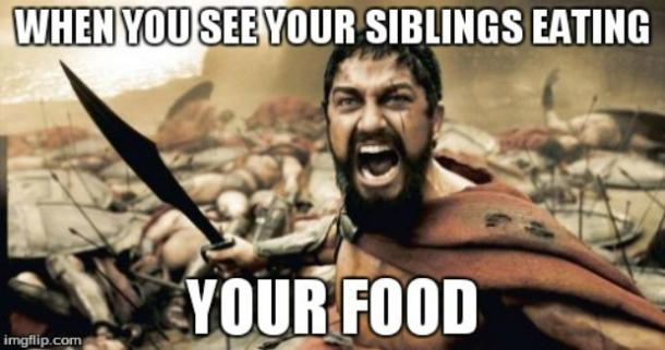 siblings day meme