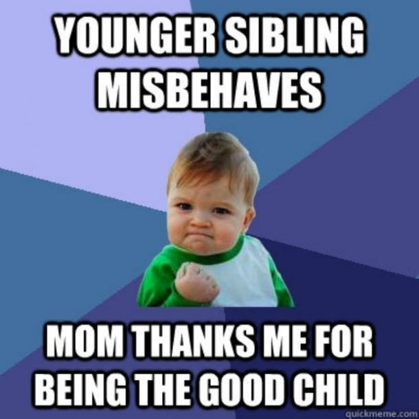 best funniest memes national sibling day