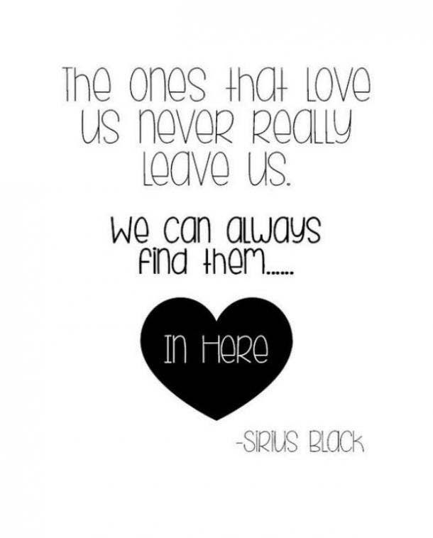 Sirius Black love quote Harry Potter quotes