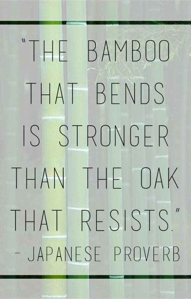 Inspirational Quotes Zodiac Taurus