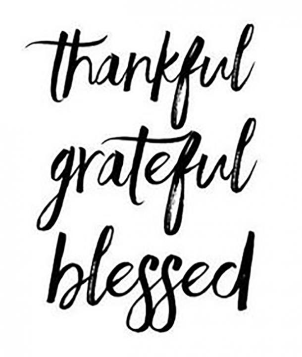 best gratitude quotes memes for thanksgiving to share when