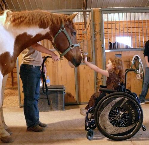 "<a href=""https://www.ncmedical.com/animal-assisted-therapy"">ncmedical.com</a>"