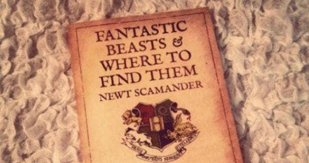 Hogwarts Fantastic Beasts J K Rowling
