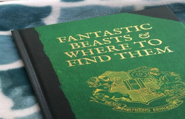 Harry Potter Fantastic Beasts book