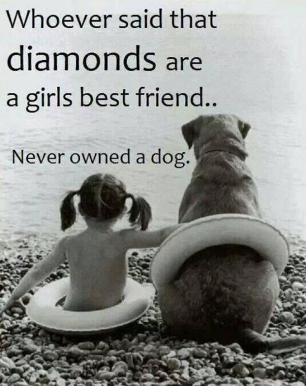 Delightful Dogs Are A Womanu0027s Best Friend Quotes.  Design Inspirations