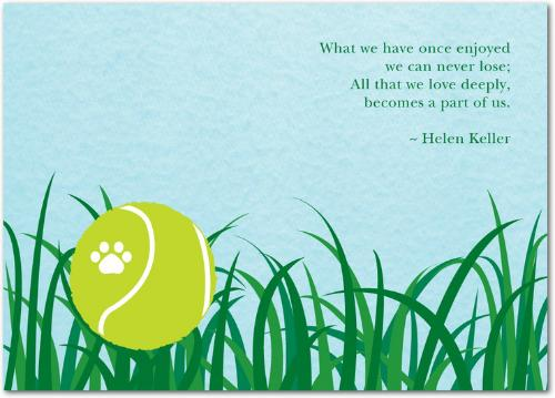 """<a href=""""http://blog.tinyprints.com/general-information/sympathy-cards-for-pets-in-memory-of-cody/"""">http://blog.tinyprints.com</a>"""
