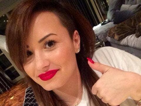 "<a href=""http://photos-h.ak.instagram.com/hphotos-ak-ash/929295_428620343940679_1849622374_n.jpg""/>Demi Lovato Instagram</a>"