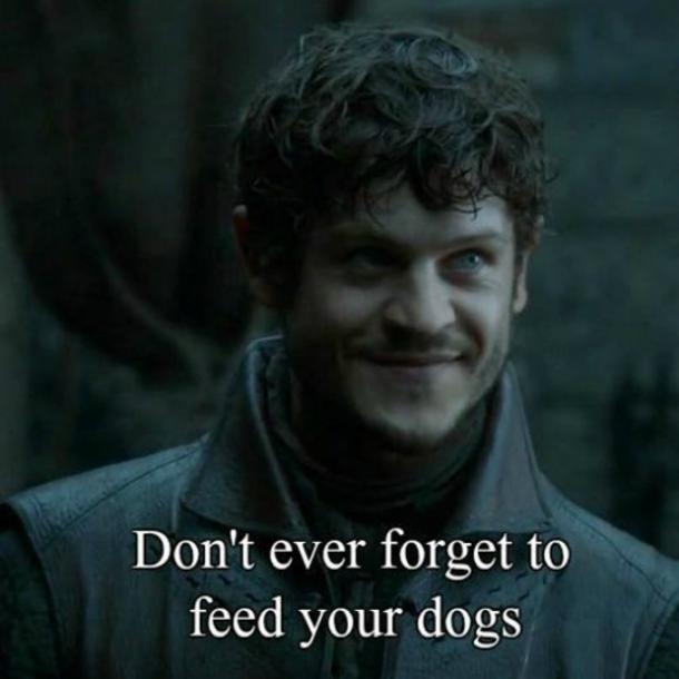 Game of Thrones dog Meme