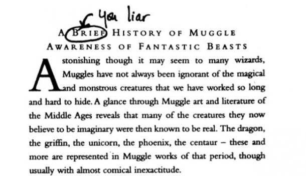 Harry Potter Ron Weasley Fantastic Beasts
