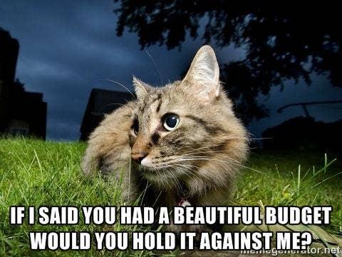 mindblowingcats.tumblr.com, https://twitter.com/_StarrHall_/status/385419973382115328