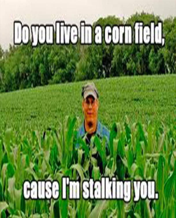 Corny Pick Up Lines