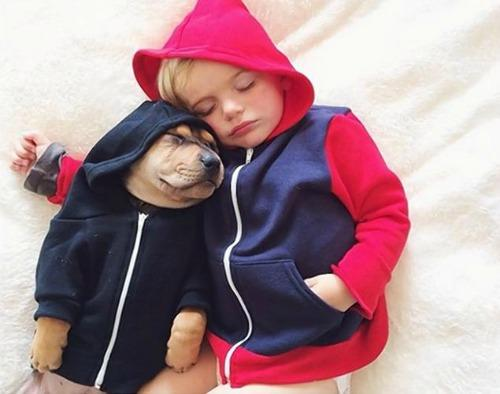"""<a href=""""http://www.nydailynews.com/life-style/boy-pupping-napping-viral-online-article-1.1542171"""">nydailynews.com</a>"""