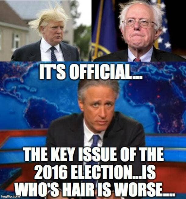 Funny Bernie Sanders Memes Hair
