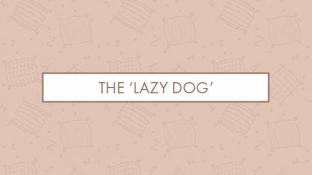 The 'lazy dog'
