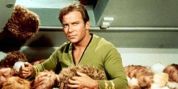 """<a href=""""http://www.locatetv.com/blog/wp-content/uploads/2011/03/77526-21.jpg""""/>William Shatner</a>"""
