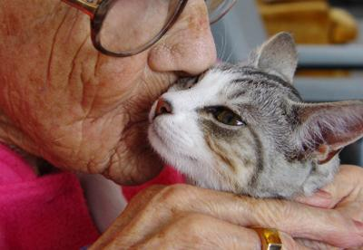 "<a href=""http://techietonics.com/the-human-animal-bond-a-healing-power/""> techietonics.com </a>"