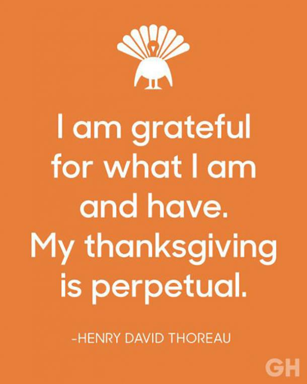 best gratitude quotes memes to share social media feeling thankful
