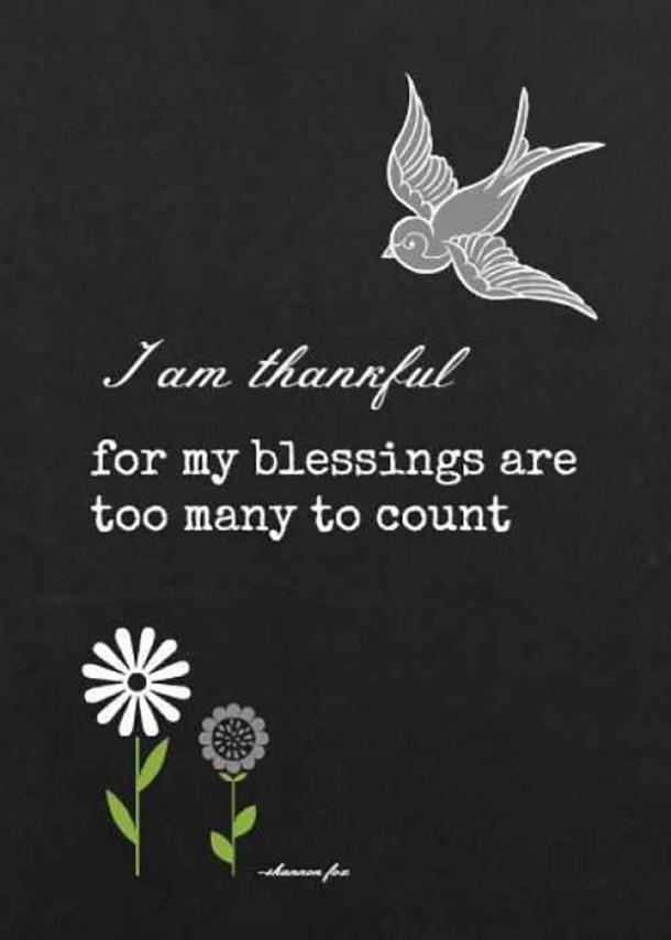 50 Best Gratitude Quotes And Thanksgiving Memes To Share On Social