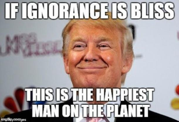 trump4?itok=vDf4HK5M 15 donald trump memes and funny quotes guaranteed to get you