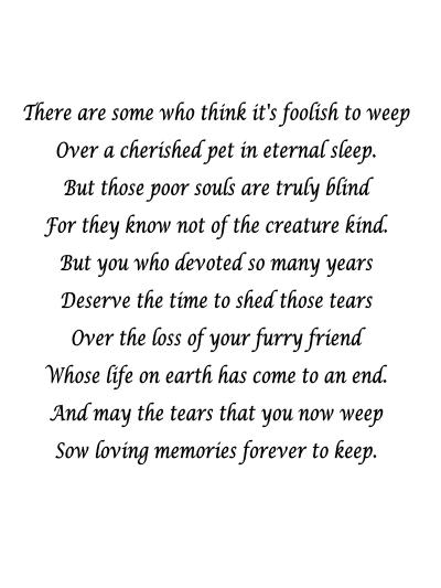 Quotes About A Girl And Her Dog Prepossessing 7 Sympathy Quotes To Help Cope With Death Of A Pet  Yourtango