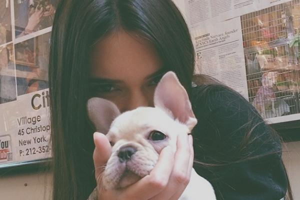 Kendall Jenner With A Dog