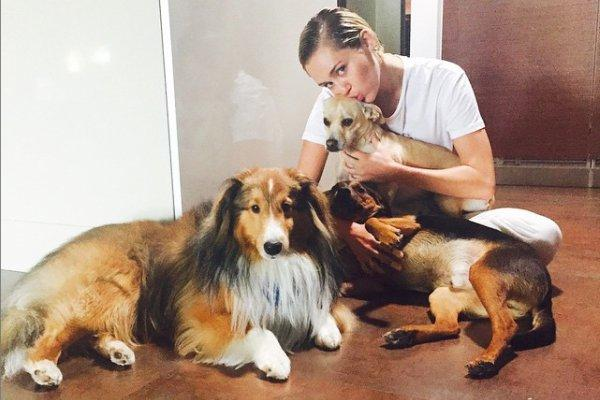 Miley Cyrus loves dogs.