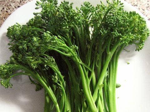 veggie love stories