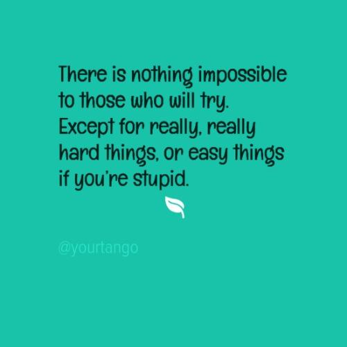There is nothing impossible to those who will try. Except for really, really hard things, or easy things if you're stupid.