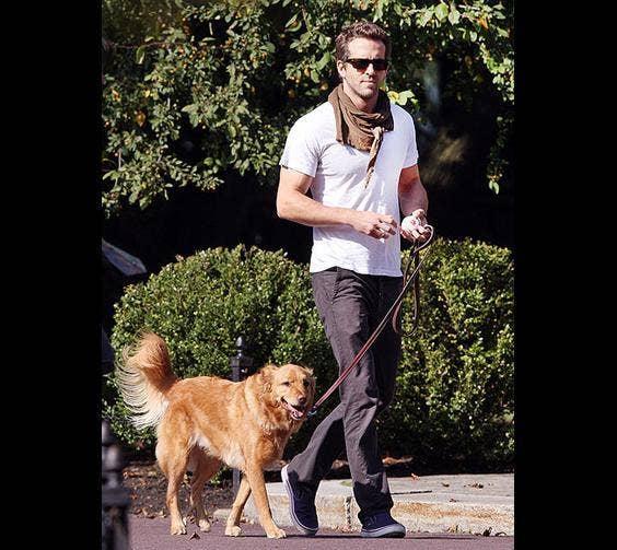 Ryan Reynolds & His Dog, Baxter