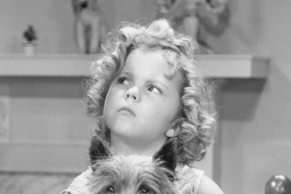 Shirley Temple from Bright Eyes
