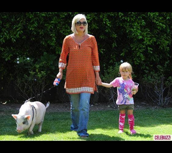 Tori Spelling & Her Pig, Hank