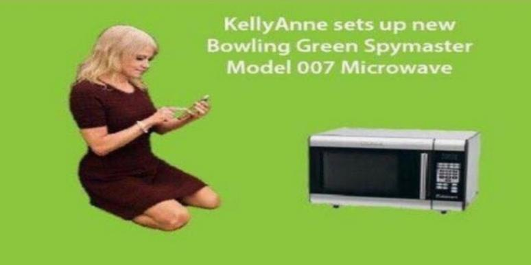Screen Shot 2017 03 13 at 1.05.07 PM?itok=2RXEqe_D the 12 funniest kellyanne conway microwave memes yourtango