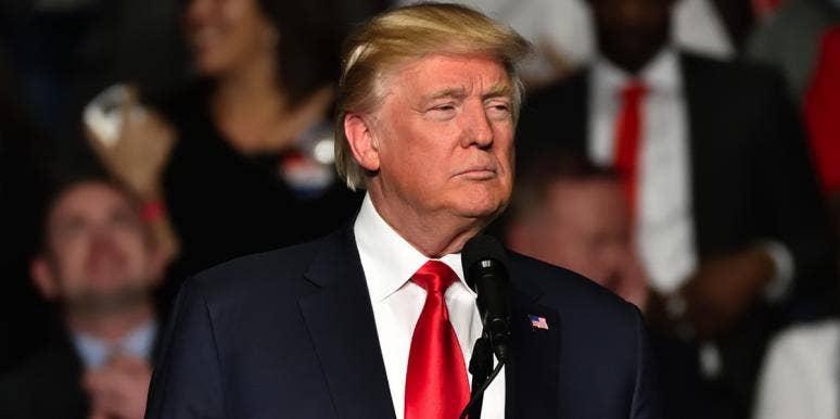 10 Dumb Donald Trump Quotes