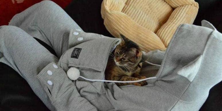 animals pets hoodie