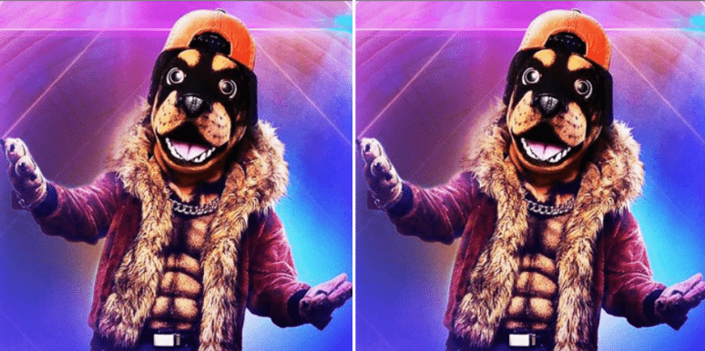 The Masked Singer Spoilers: Who Is The Rottweiler?