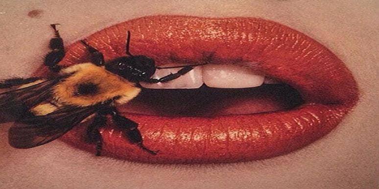 Bee Sex — Melissophilia Is The Latest Sex Fetish