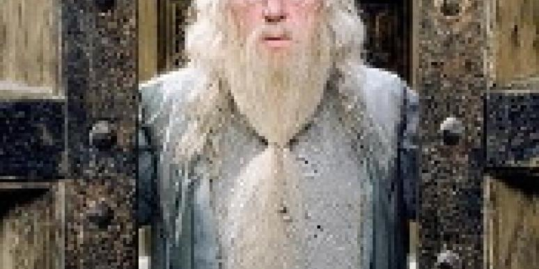 Dumbledore Is Totally NOT Gay