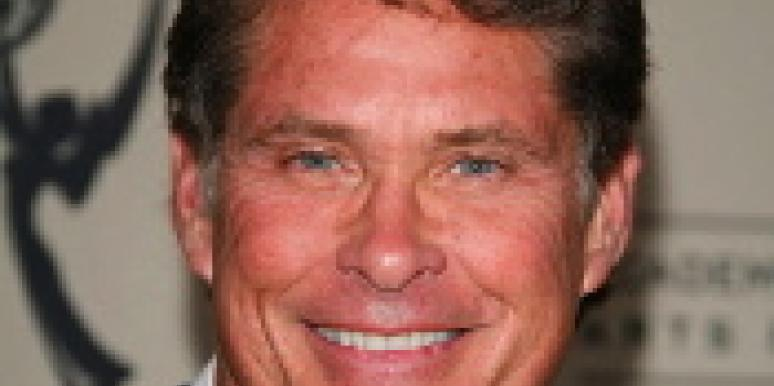 Decision Pending On Hasselhoff Divorce