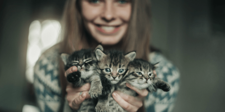 Does My Cat Love Me? Probably Not, Says New Study
