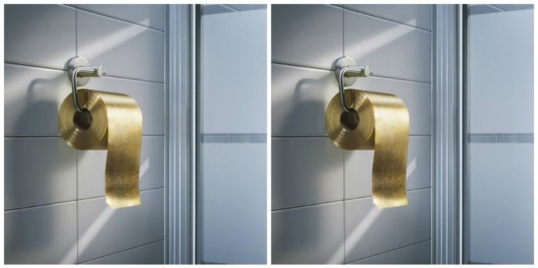 toilet paper vagina